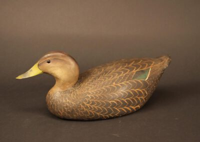 Ward Brothers Black Duck